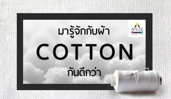 ผ้า Cotton คืออะไร มาทำความรู้จักกัน